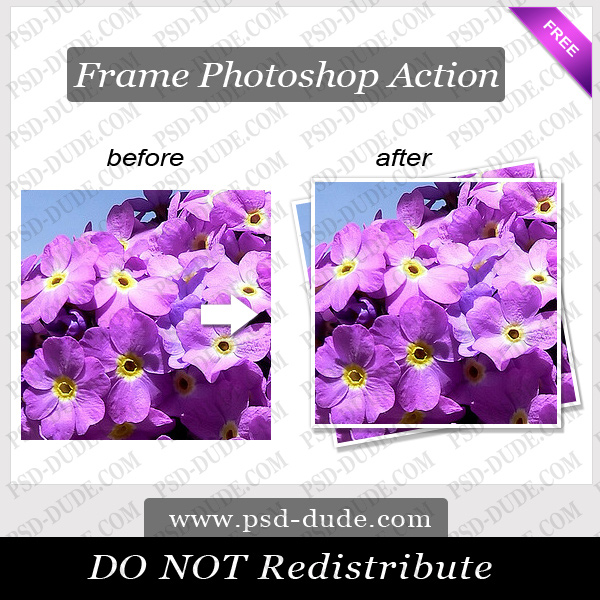 Photoshop Frame Action by PsdDude photoshop resource made by psd-dude.com