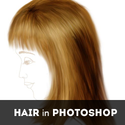 Smudge Tool Tutorials for Hair Manipulation in Photoshop psd-dude.com Resources