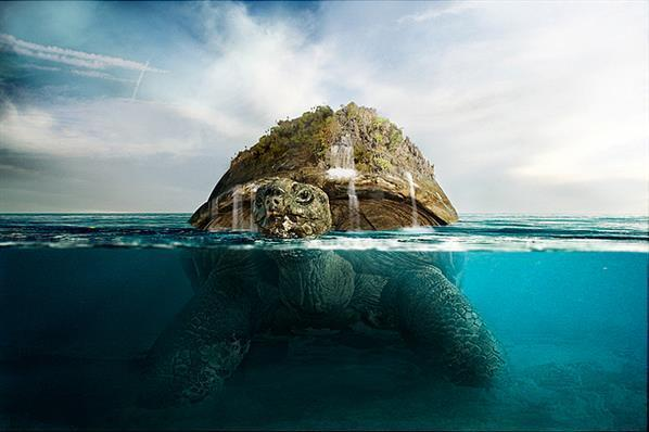 Photoshop tutorial submersed water turtle