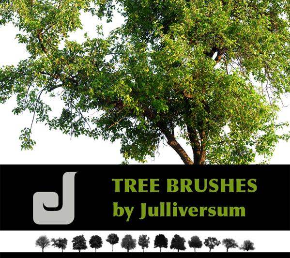 HIGH