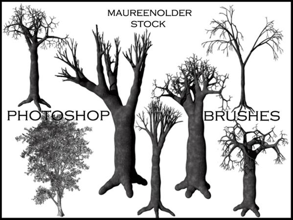 STOCK