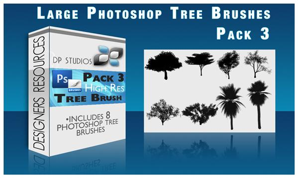 8
