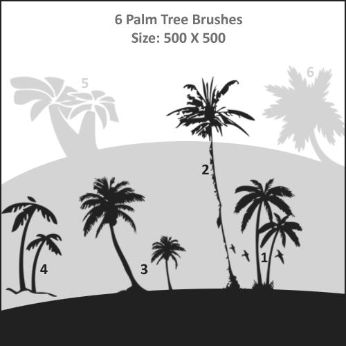 Palm