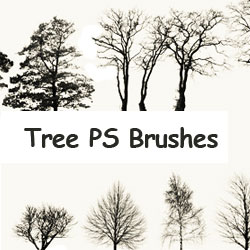 Tree Ps Brushes psd-dude.com Resources