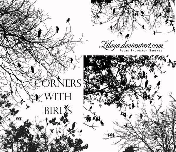 Corners