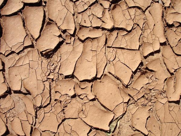 Cracked Red Clay Surface