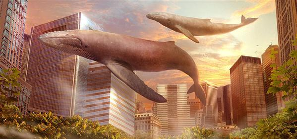 Satory Whales in City Photo Manipulation