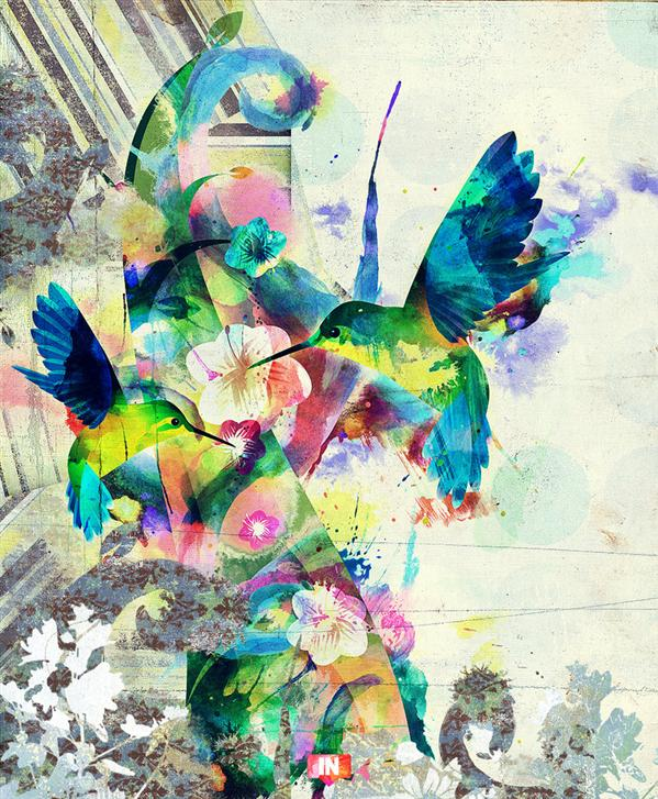 Hummingbird Remix by wisseh photoshop resource collected by psd-dude.com from deviantart