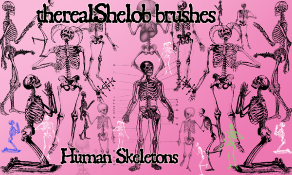 Human Skeletons Photoshop Brushes For Halloween