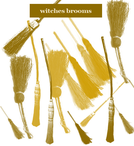 Witch Broom Brushes For Photoshop