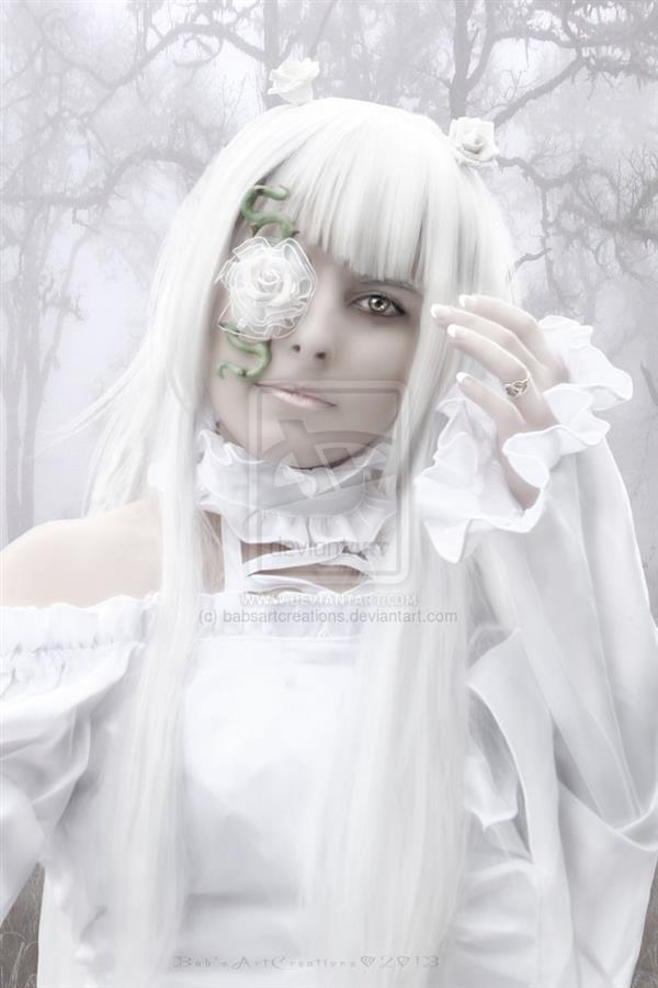 White Rose by babsartcreations photoshop resource collected by psd-dude.com from deviantart