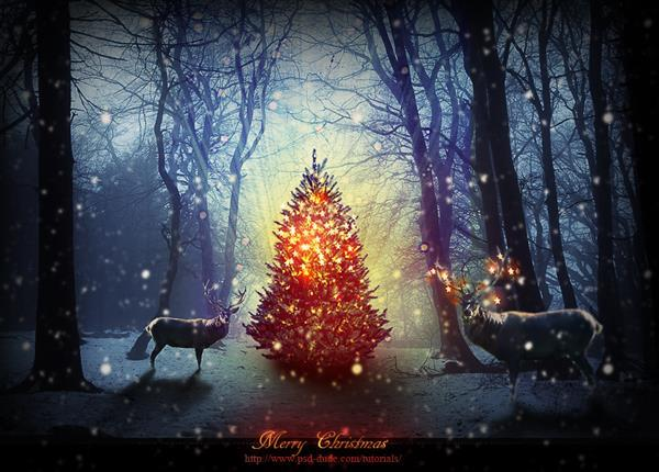 Photoshop Tutorial For Creating A Beautiful Christmas Picture Of A Magic Forest With A Glowing Christmas Tree