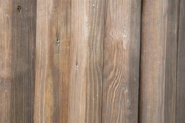 Free Wood