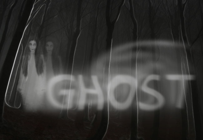 Double ghost silhouette of a girl on a spooky forrest background