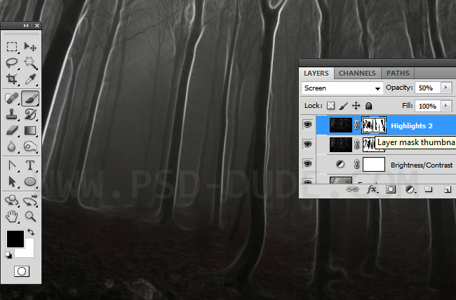Photoshop layer mask for hiding highlights in the forrest background image